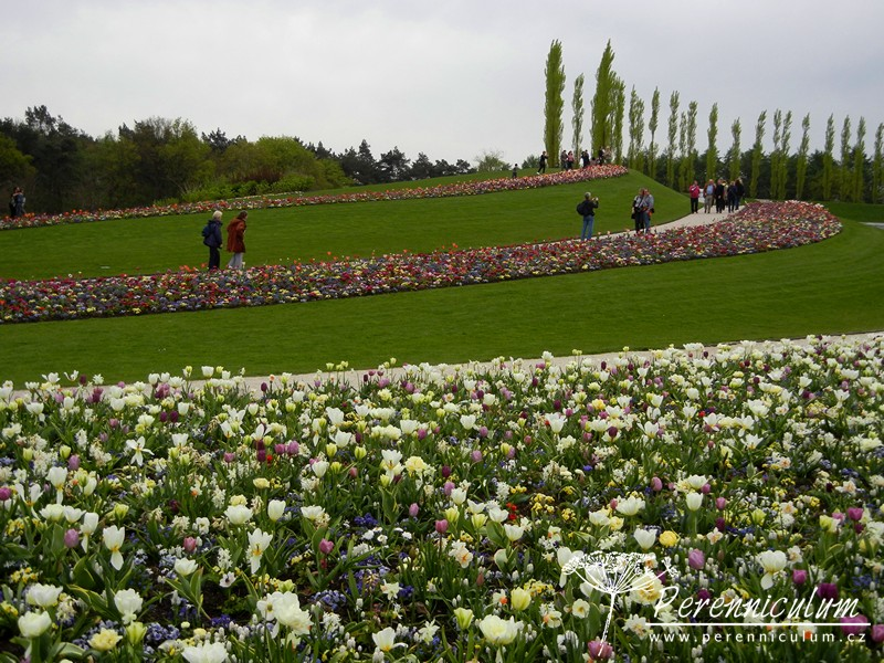 Floriade 2012, Venlo