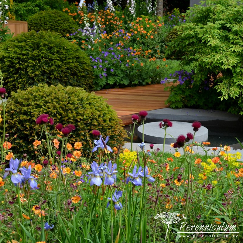 RHS Chelsea Flower Show 2015 hlavní obrázek