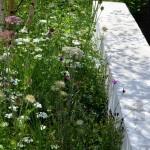 RHS Hampton Court Palace Flower Show_67