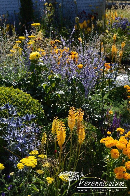 Amnesty International: Magna Carta 800 Garden