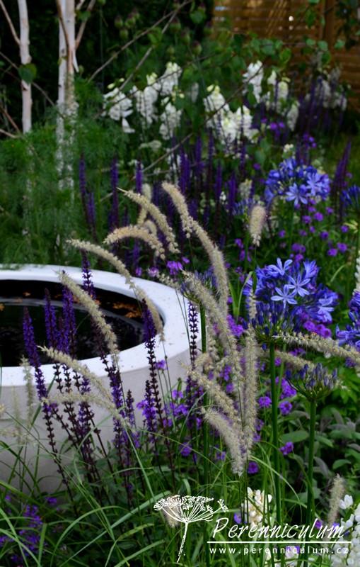The Wellbeing of Women Garden