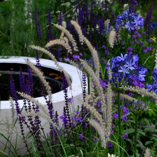 Zahradnická událost roku 2015 hlavní obrázek