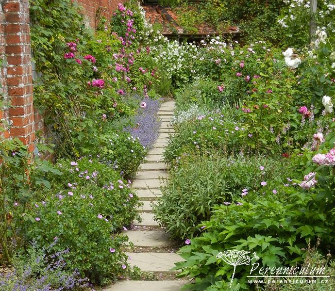 Mottisfont Gardens