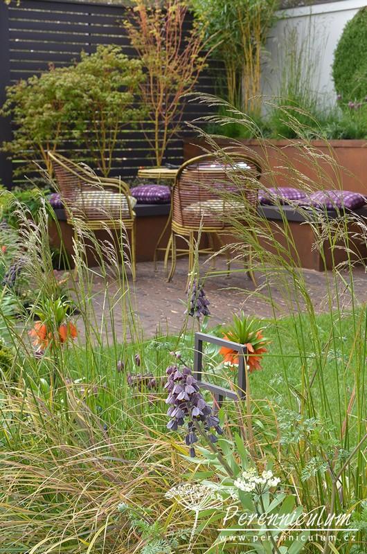 Řebčík perský (Fritillaria persica) tentokrát v kombinaci s oranžovým řebčíkem královským (Fritillaria imperialis).
