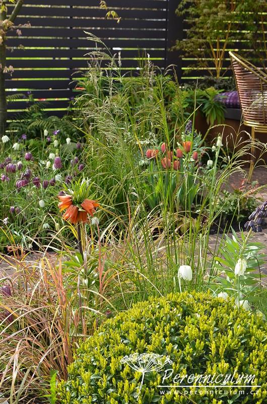 Barevná paleta výsadeb zahrnuje oranžovou - kultivar tulipánu a řebčíku královského (Fritillaria imperialis), purpurovofialovou (řebčík kostkovaný Fritillaria meleagris) a bílou (Fritillaria meleagris var. alba).
