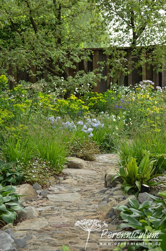 Výsadbám okolo kamenitého chodníčku dominují bohyšky (Hosta), kapradiny a trávy a v pozadí limetkově zelené pryšce (Euphorbia).