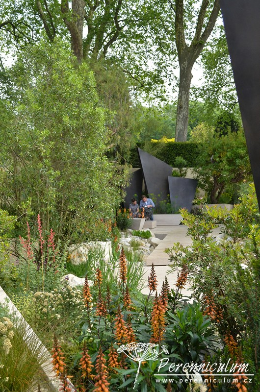 Zahrada je plná exotických rostlin, v popředí příbuzný náprstníku Isoplexis canariensis.