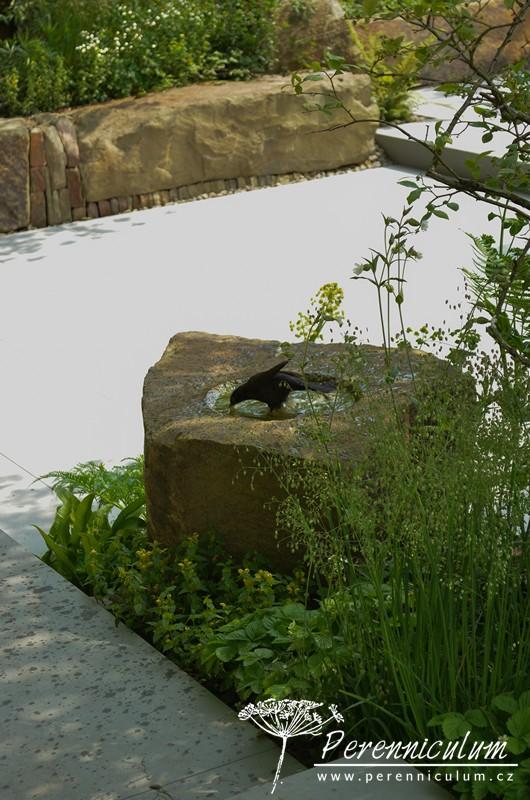 Přírodně laděná zahrada přilákala ke koupání místního kosa.