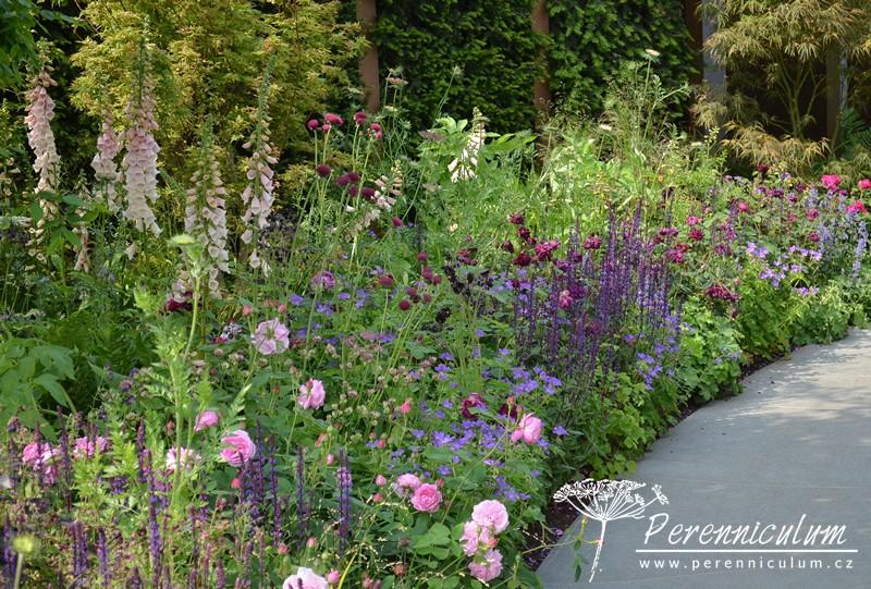 Barevné výsadby zahrnují světle růžové a purpurové růže (<em>Rosa spp.</em>), náprstníky (<em>Digitalis purpurea</em>), pcháč (<em>Cirsium rivulare</em> 'Atropurpureum'), šalvěje (<em>Salvia nemorosa</em>) a nebo kakosty (<em>Geranium</em> 'Mayflower').
