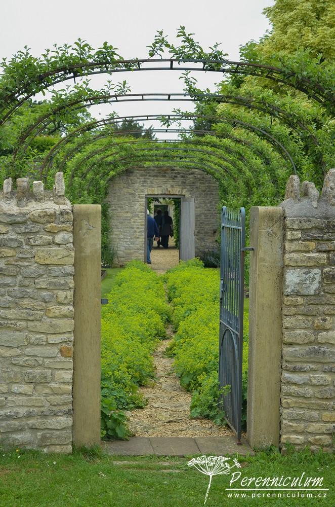 Pohled z louky zpět přes zeleninovou/kuchyňskou zahradu s tvarovanými jabloněmi.