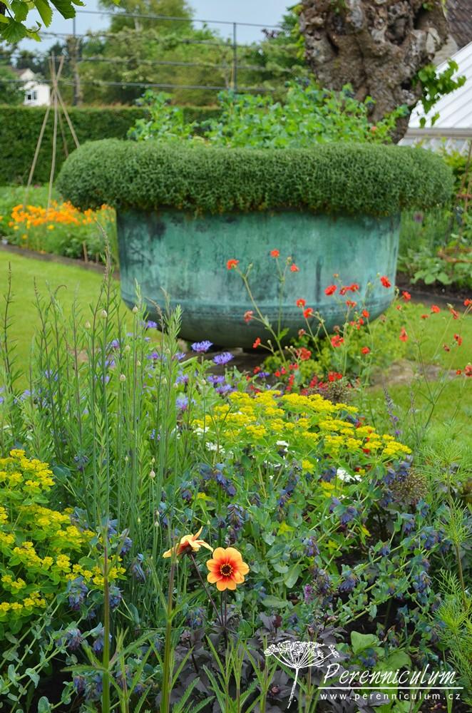 Středu zeleninové zahrady dominuje velká nádoba.