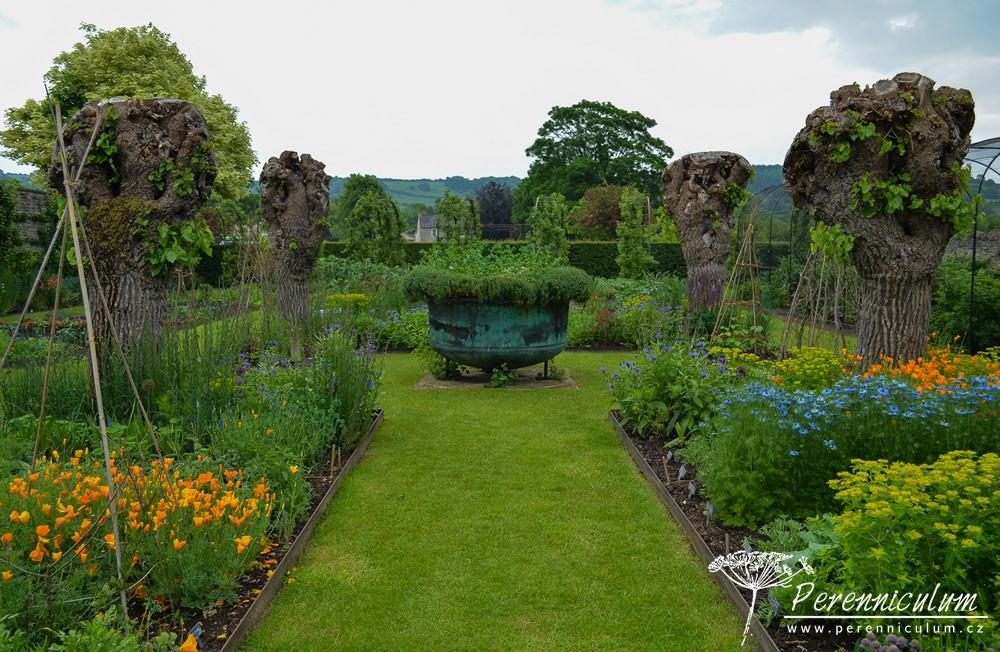 Celkový pohled na zeleninovou zahradu se čtyřmi starými morušemi střihanými na babku.