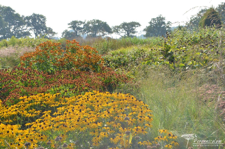 Ačkoli je zahrada vytvořená na bývalém holém poli, staré duby kolem farmy vytváří krásné pozadí svými siluetami. Slunný záhon vyplňují zápleváky (<em>Helenium</em>), třapatka (<em >Rudbeckia</em>) a okrasné trávy.