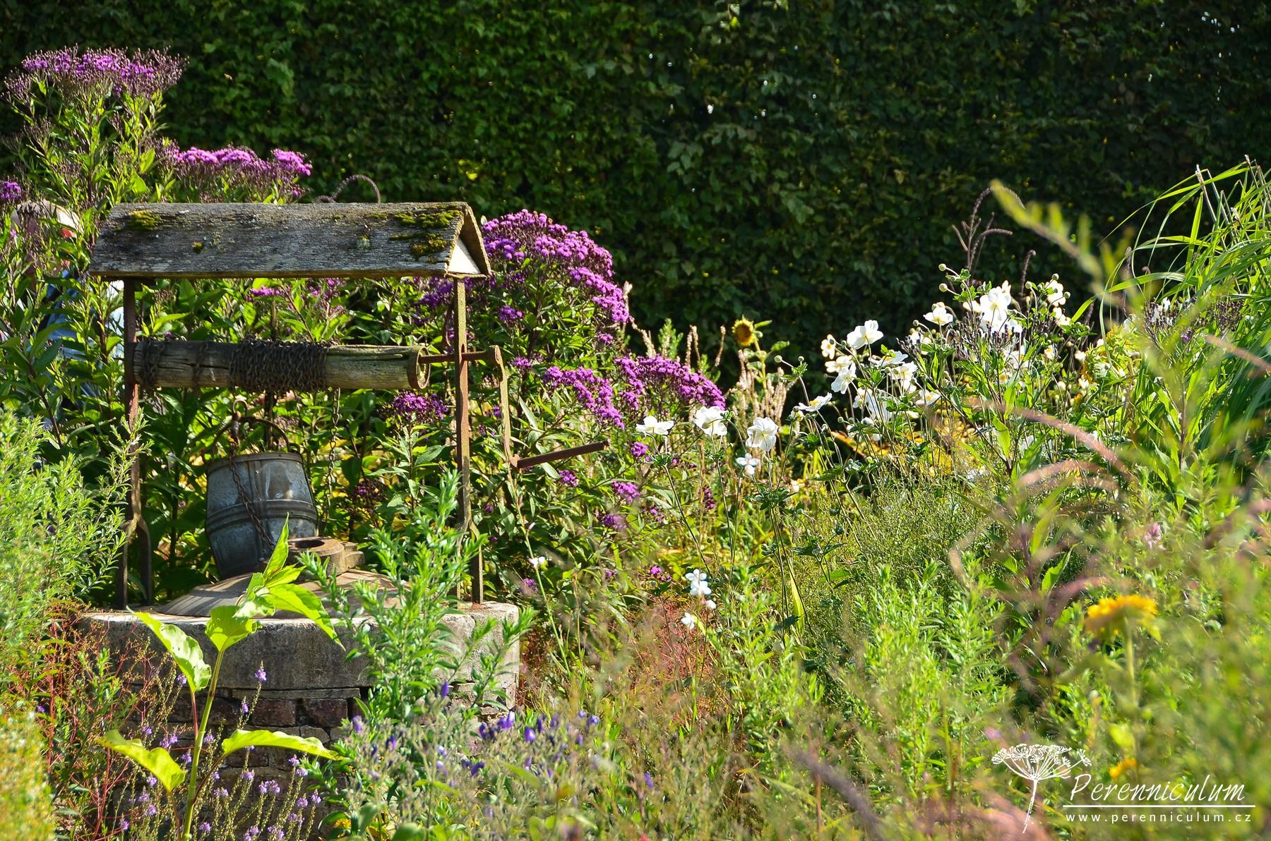 Podzimní zahradě, která navazuje na pergolu s posezením, dominují vysoké trvalky jako <em>Eupatorium</em>, <em>Vernonia</em>, <em>Symphiotrichum</em> nebo <em>Anemone hybrida</em>. Mezi nimi se schovává stará studna.
