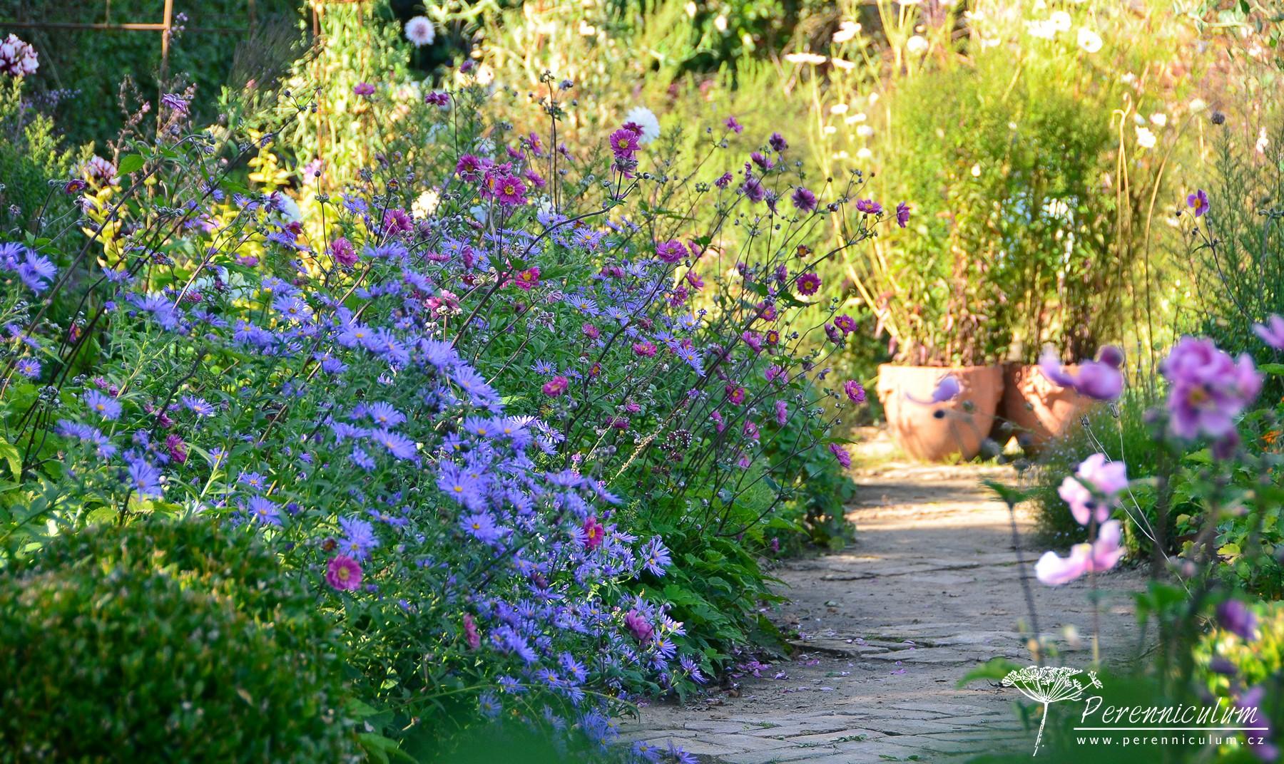 Květinová zahrada nabízí různé květy v průběhu celého roku.