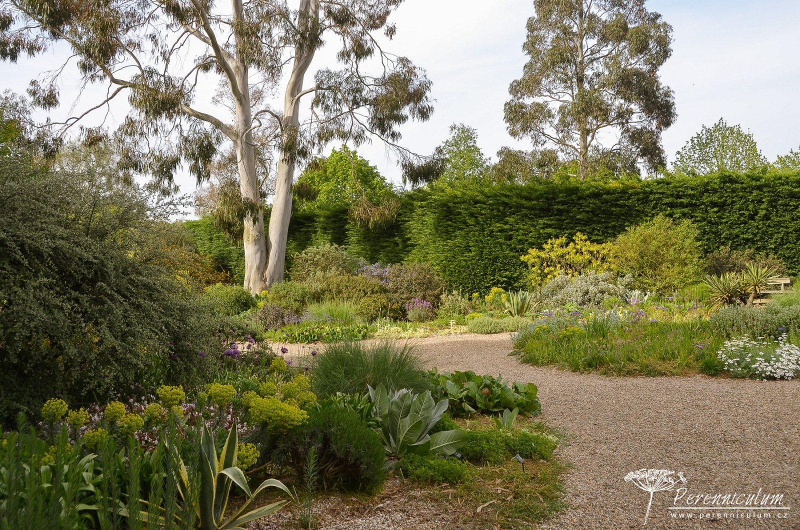 Gravel Garden, tzv. Štěrková nebo také suchá zahrada osázená jen suchomilnými rostlinami, které ani největších vedrech a suchých obdobích nepotřebují zálivku.