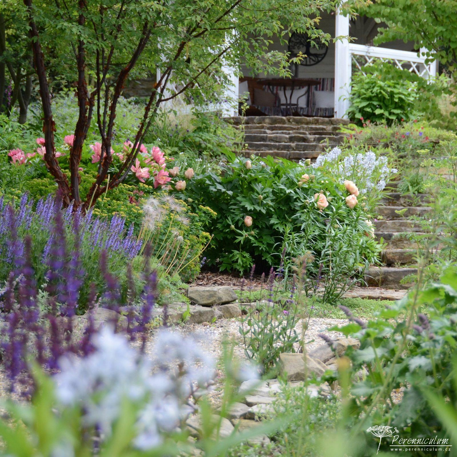 Rozevlátá zahrada s nádechem staré Anglie hlavní obrázek
